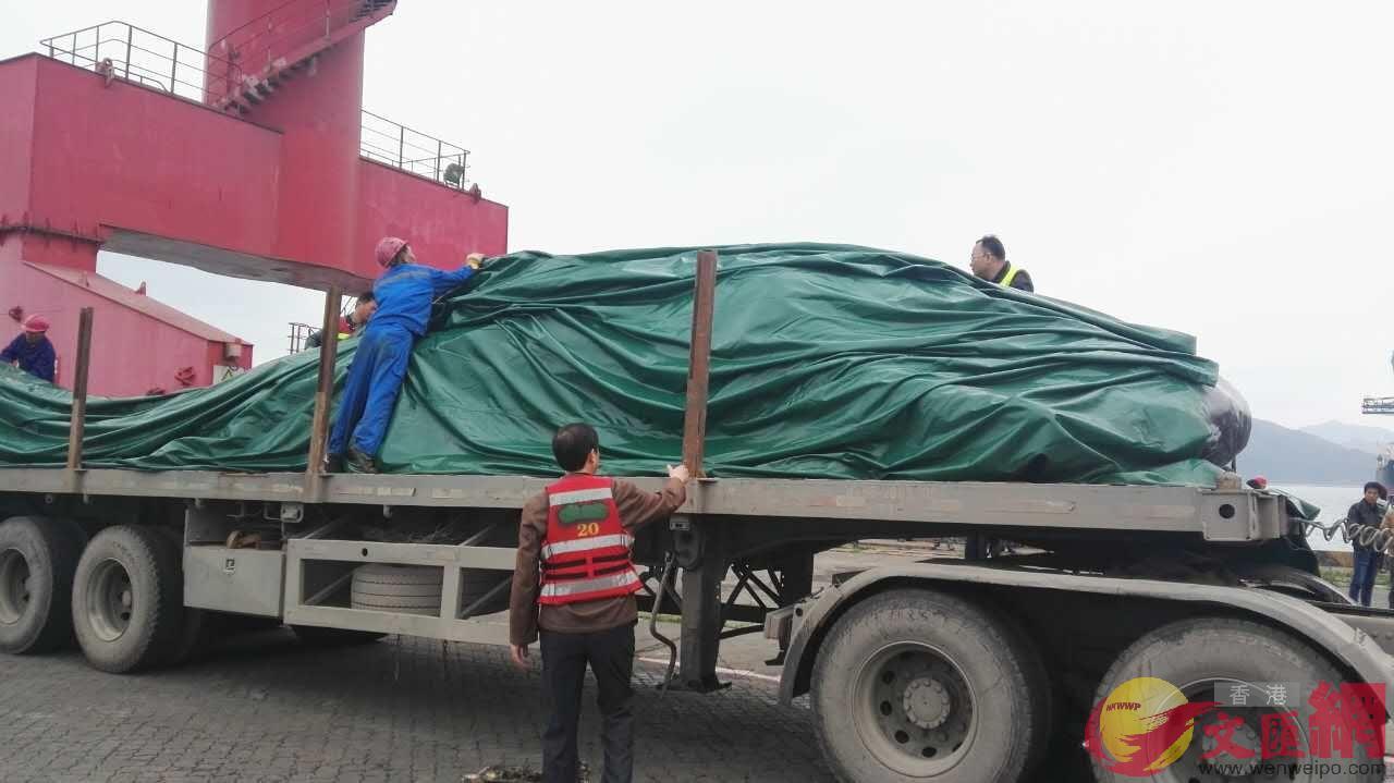 運輸抹香鯨屍體的車輛 記者郭若溪攝