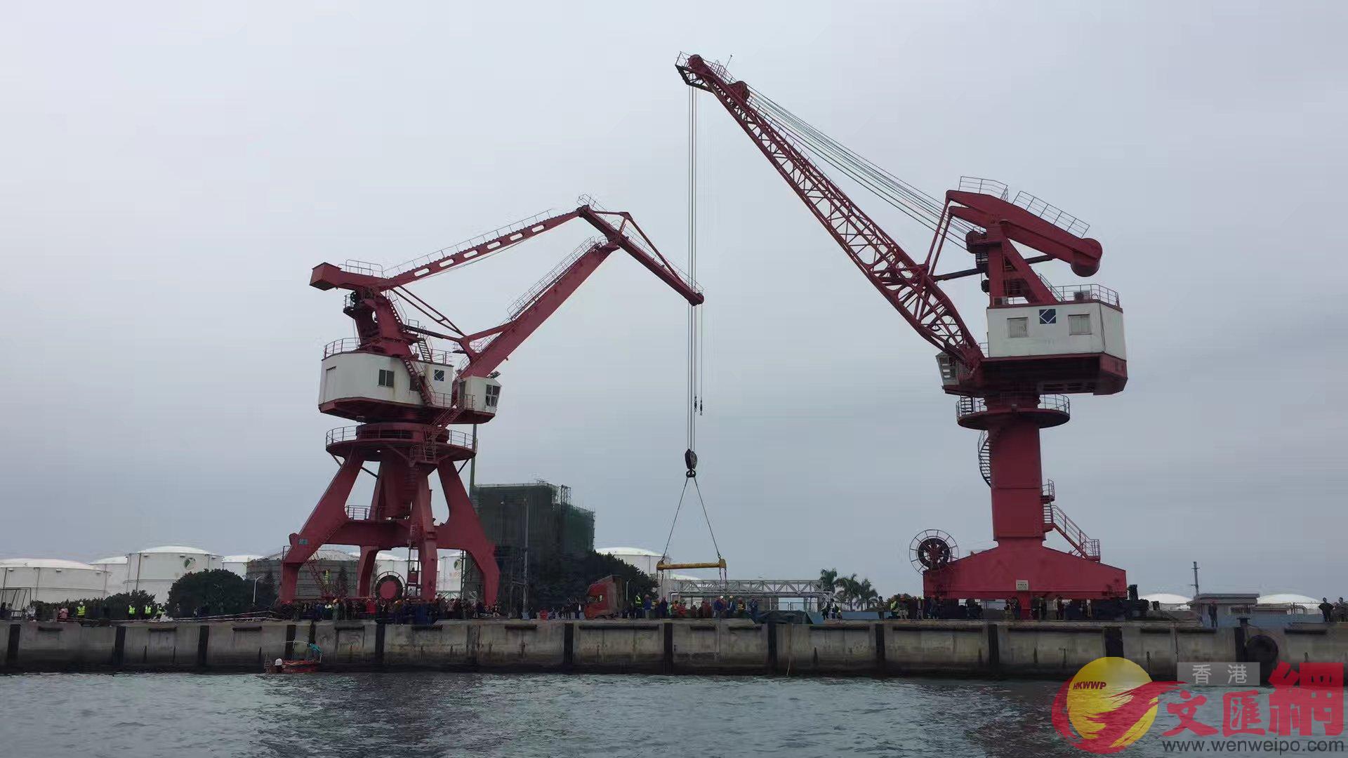 兩台吊塔起吊抹香鯨 記者郭若溪攝