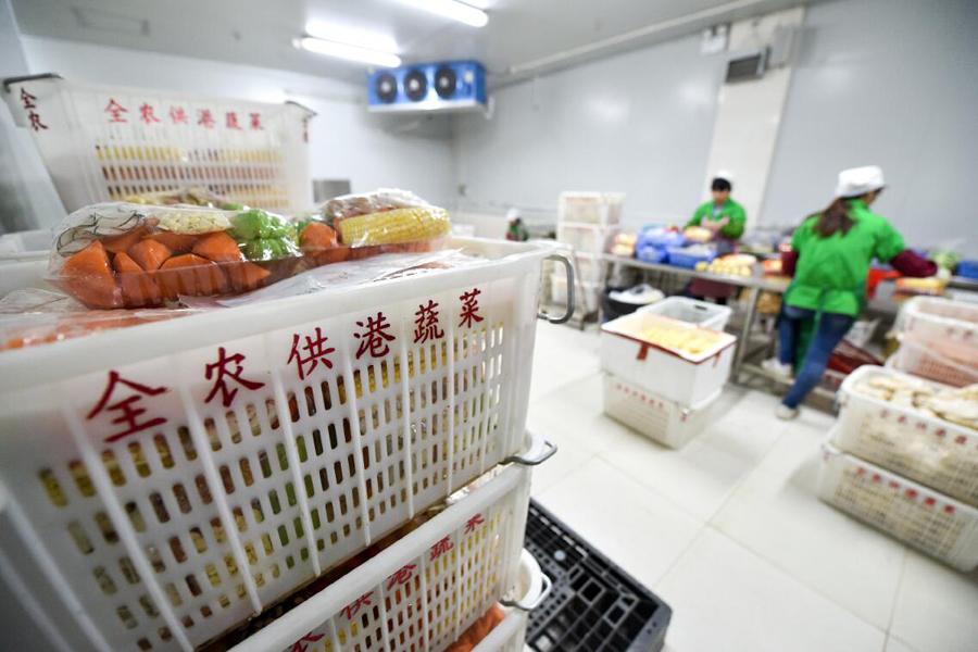 在東莞市國際蔬菜交易中心,工人對運來的蔬菜進行加工