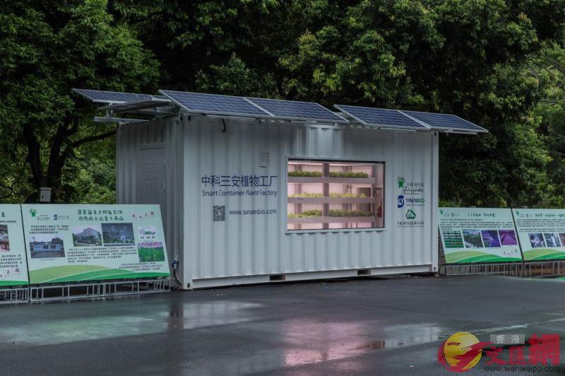 集裝箱植物工廠(記者郭若溪 攝)