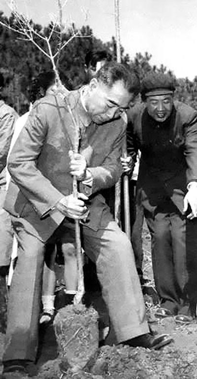 1964年3月,周恩來在昆明植樹。