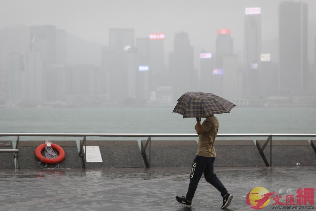 香港天文台預料今年至多有8個熱帶氣旋影響香港(資料圖片)