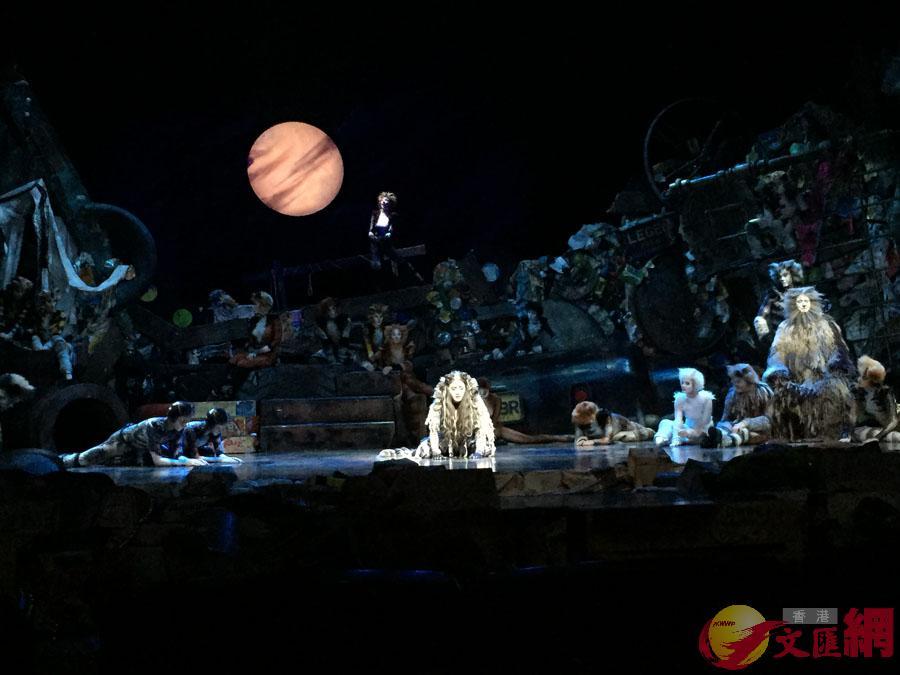 風靡全球37年,經典原版音樂劇《貓》開啟來華最大巡演,圖為音樂劇《貓》全體演員在深圳體驗會現場表演 記者毛麗娟攝