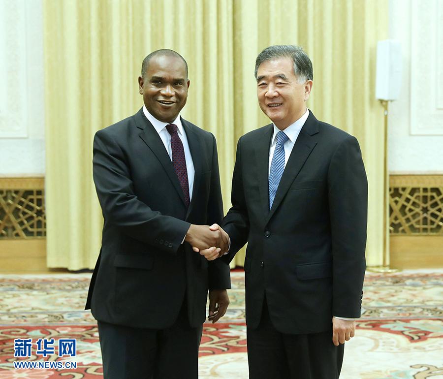 5月28日,全國政協主席汪洋在北京人民大會堂會見布基納法索外長巴里。