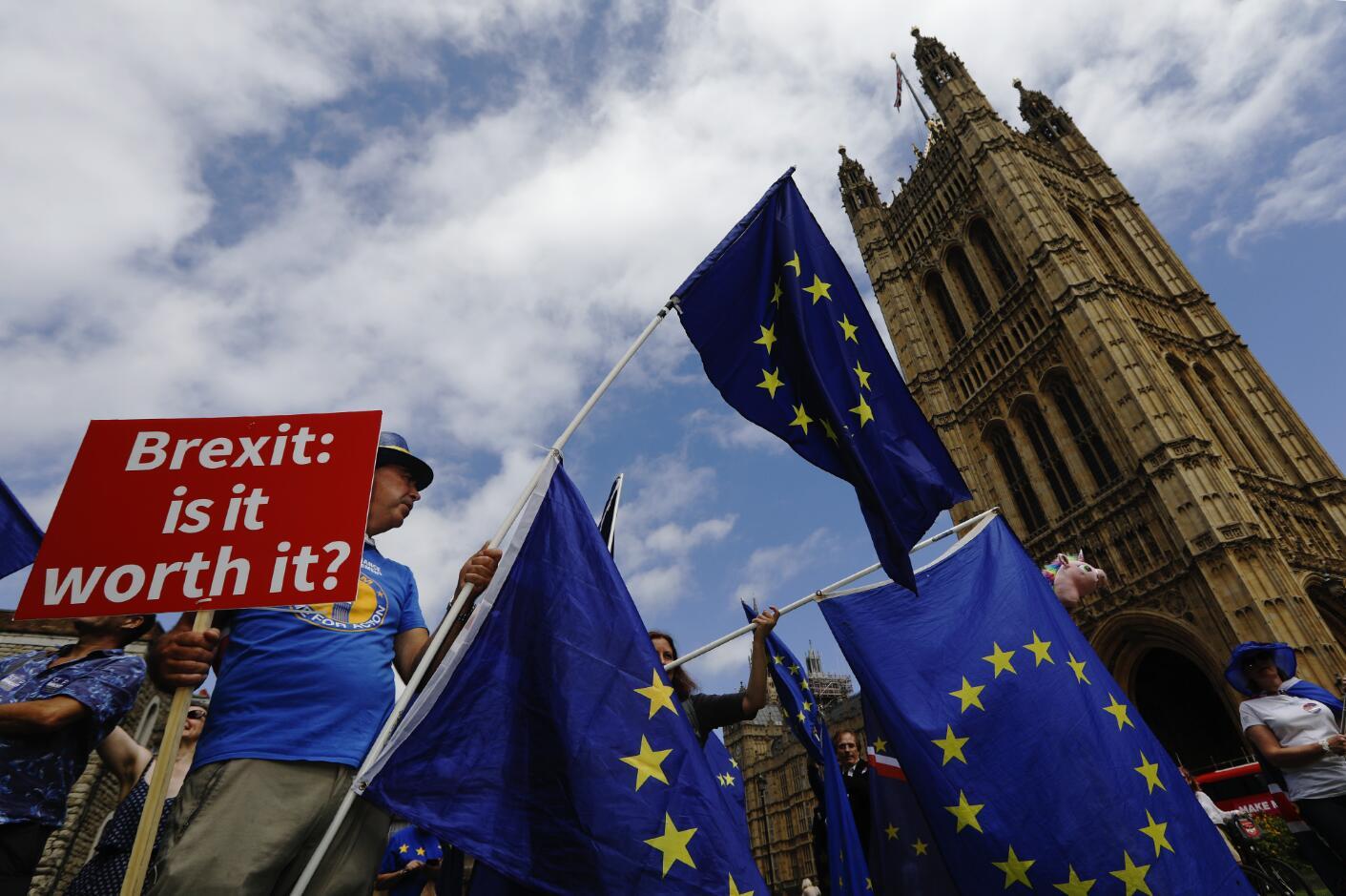 6月20日,希望繼續留在歐盟的英國民眾聚集在英國議會外示威。