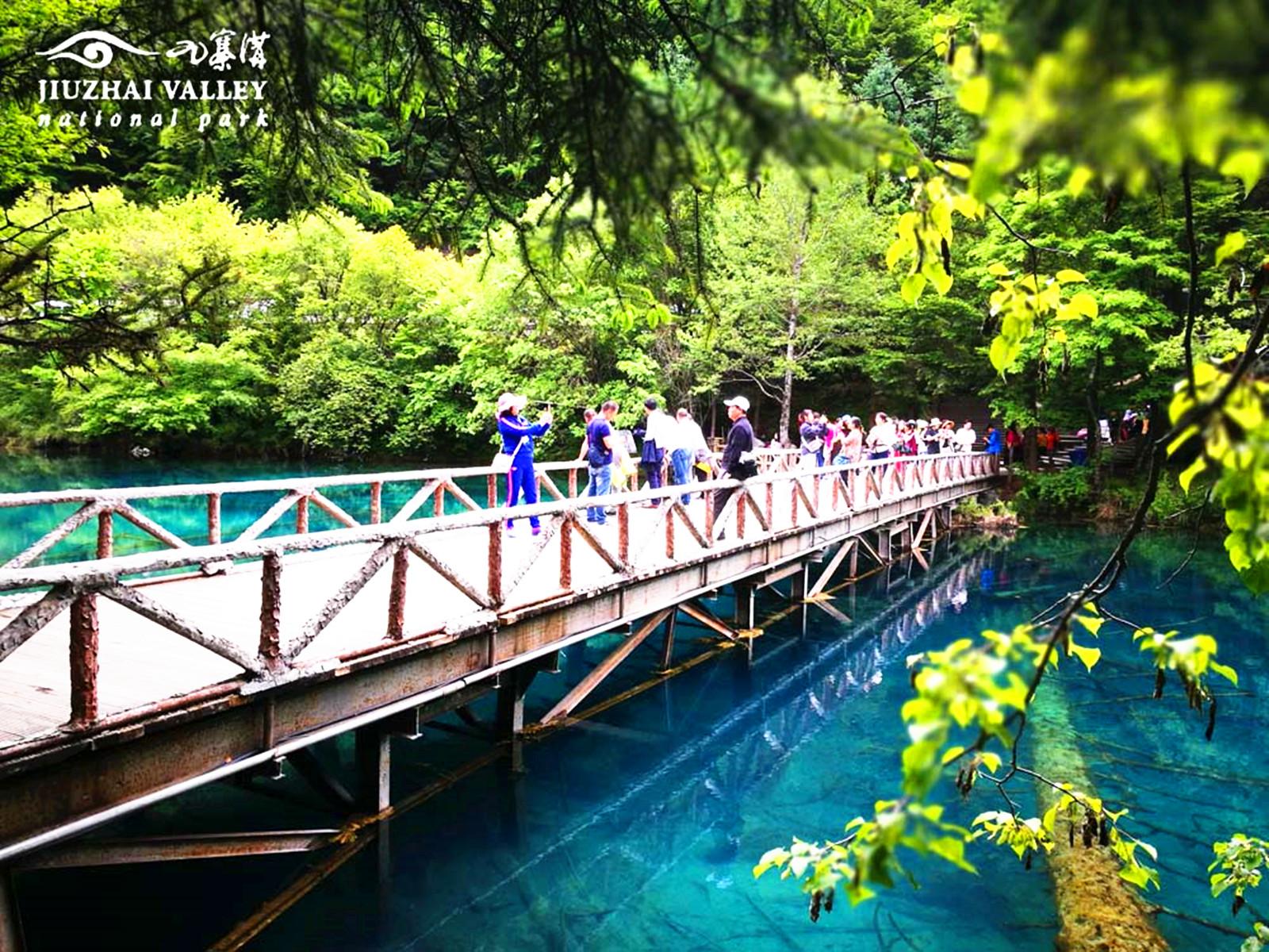 遊客在五花海觀景點遊覽(香港文匯網四川傳真)