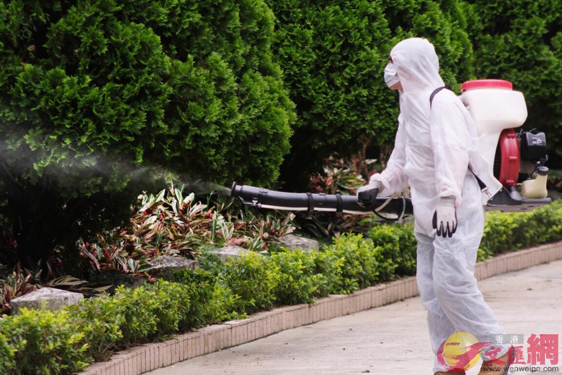 獅子山公園有職員穿着防護衣物向草叢噴灑滅蚊噴霧。
