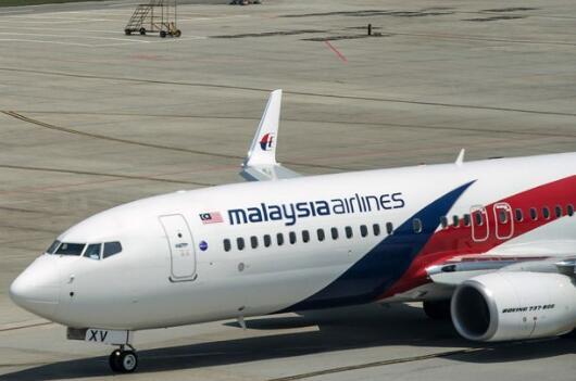 英国专家称,MH370客机残骸位于柬埔寨密林深处。