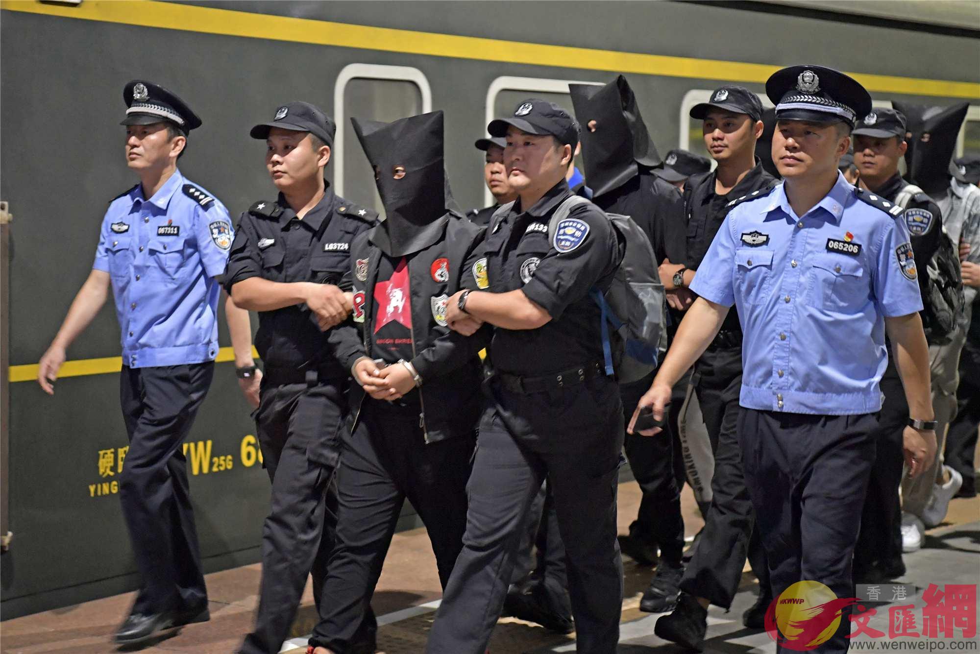 特大詐騙犯罪團伙案,200萬人受害600人被捕(龍崗警方供圖)
