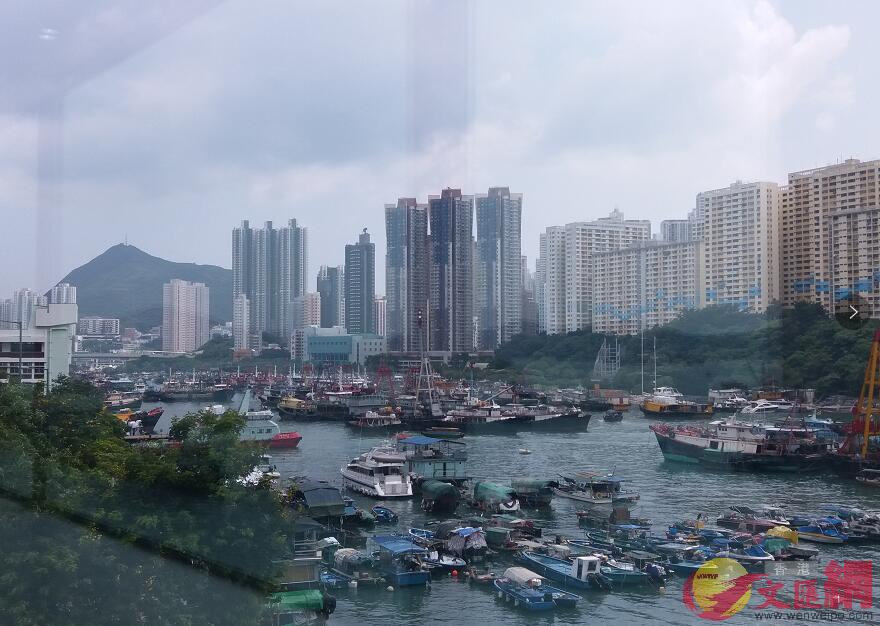 香港仔避風塘聚集了大批漁船(全媒體記者攝)