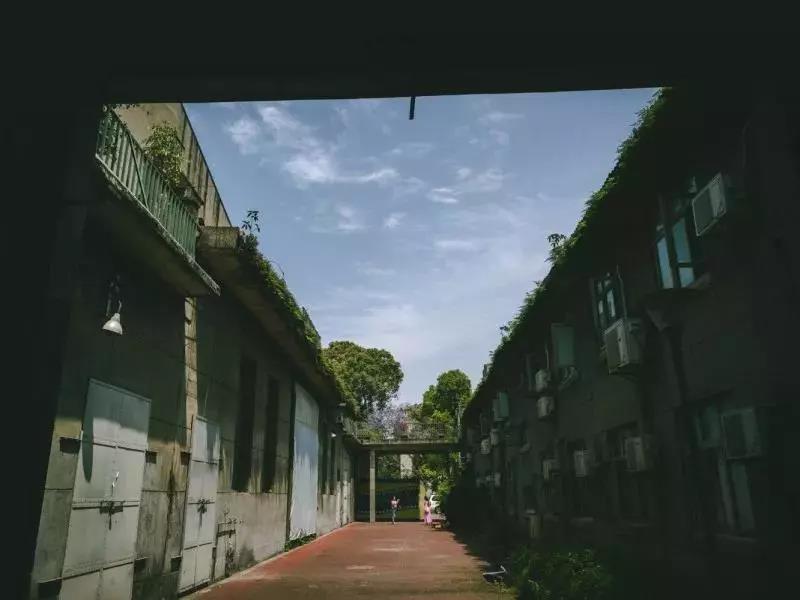 始建於1958年的峨影廠,如今已建成「峨影1958」創意區,成為了成都文藝青年和電影愛好者的打卡地