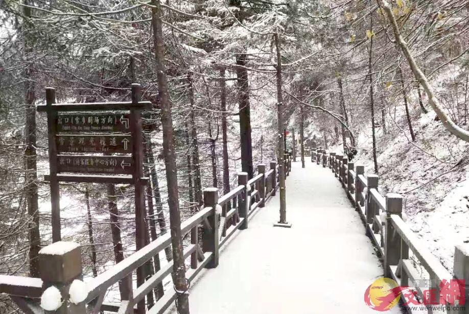 雪鄉景區迎來了2019年入秋的第一場雪。于海江/攝