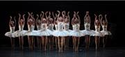 《天鵝湖》|日期:2017 年 6 月 16 - 18 日|地點:北京天橋藝術中心|機構:香港芭蕾舞團